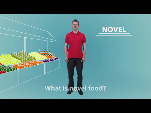 What is novel food?