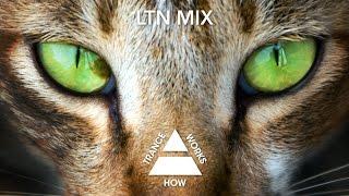 LTN & Eranga ft. Katty Heath - Don