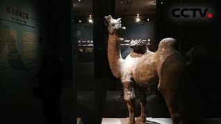 [多彩亚洲] 亚洲文明对话大会开幕 丝绸之路文物精品 见证多元文化交流共生 | CCTV