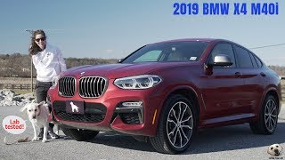 2019 BMW X4 M40i: Andie the Lab Review! #BMW #AndietheLab #LabTested