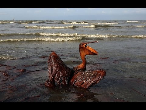 Top 5 Worst Oil Spills in History - YouTube