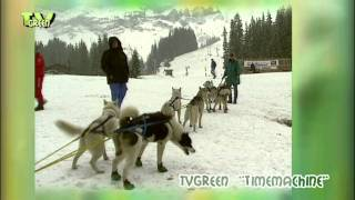 Step by Step - Sledgedogs in the Swiss Alps - part 04