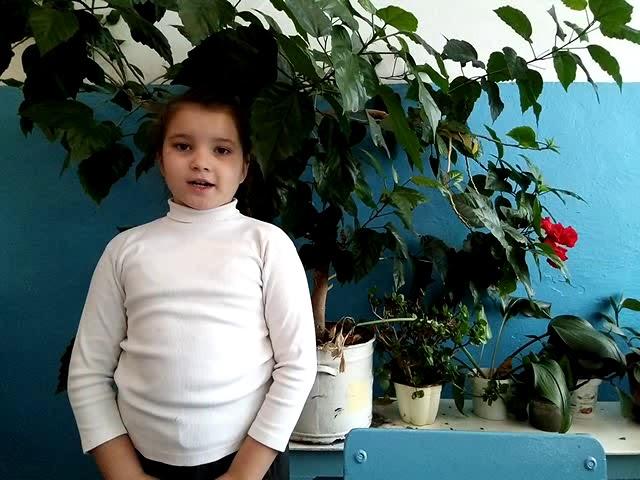 Изображение предпросмотра прочтения – СветланаРайс читает произведение «Стихи о рыжей дворняге» Э.А.Асадова