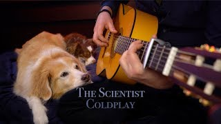 The Scientist - Coldplay (Fingerstyle Guitar)