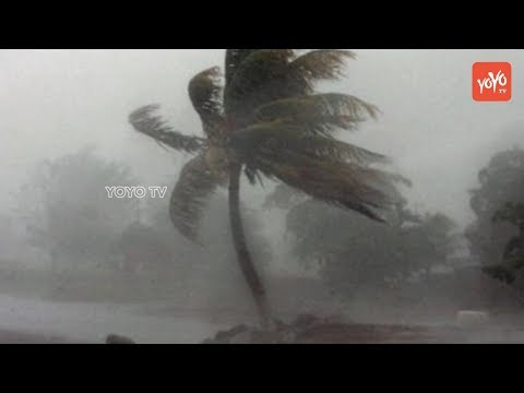 Cyclone Fani Latest