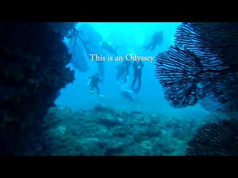 South Carolina Marine Science Program - Study Abroad