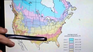 Garden Basics E3: Understanding Cold Hardiness Zones