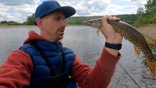 Рыбалка ранним утром Окуни и щуки клюют не переставая