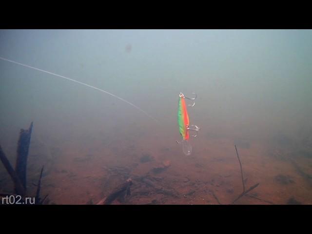 Копия воблера Megabass Diving Flap Slap с Aliexpress (подводная съемка)
