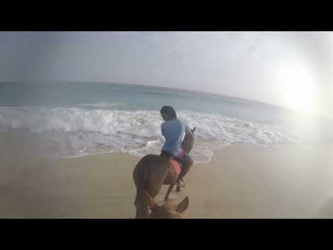 Horse riding Salitour Cape Verde Santa Maria with Dani from Woensel 19-09-2017