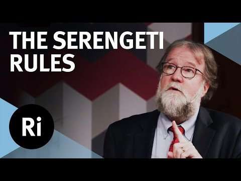 The Rules that Govern Life on Earth - with Sean B Carroll
