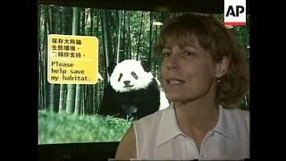 HONG KONG: PANDAS SETTLE INTO THEIR NEW OCEAN PARK HOME