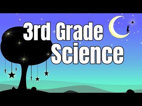 3rd Grade Science Compilation
