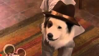 Собака точка ком   1 сезон, 18 3 серия