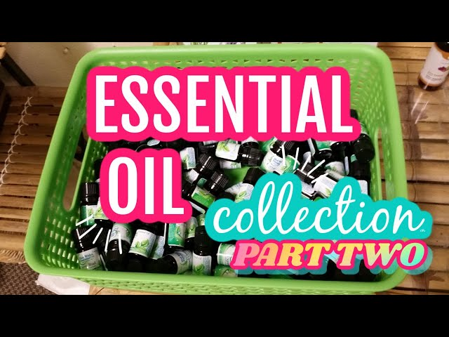 Essential Oil Hoarders Part Two | Essential Oil Collection | Tour