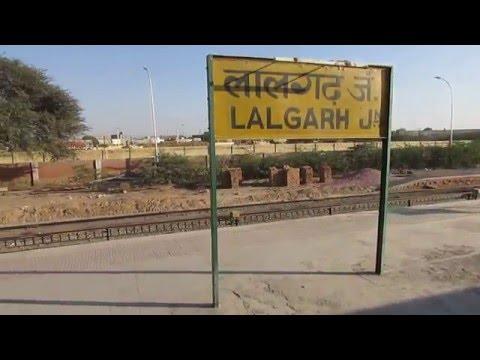 12455 Delhi Sarai Rohilla-Bikaner SF Express arriving at Lalgarh Jn, Rajasthan!