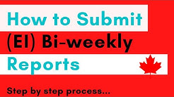 How to submit bi-weekly reports for ei step by step process