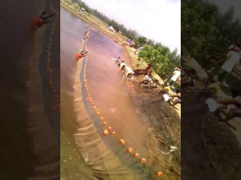 Nandarani aqua farming