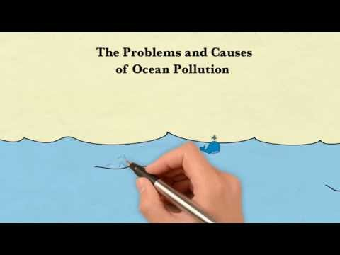The Problems and Causes of Ocean Pollution