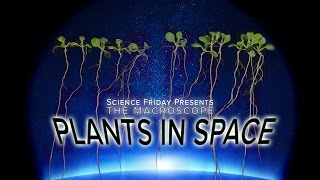 Plants In Space!