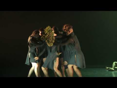 Australian Dance Theatre - vr 23 nov in Flint