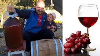 ВИНО ИЗ ВИНОГРАДА !!! Виноградное вино Часть 2