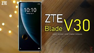 ZTE Blade V30 Price, First Look, Design, Camera, Specifications, Features