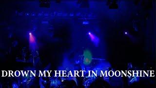 Phillip Boa & The Voodooclub - Drown My Heart In Moonshine [Lyric Video]