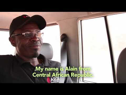 An appeal for help from Bangui, Central African Republic