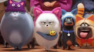 Тайная жизнь домашних животных 2. Смотреть полностью в онлайн кинотеатре