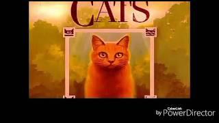 Коты Воители : Стань Диким 9 серия( не полная)