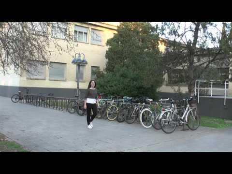 Llega la pimavera a Campus San Francisco.