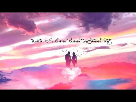 Mayam Tharu Rane I මායම් තරු රෑනේ Short Cover Lyrics Video - Himalayan