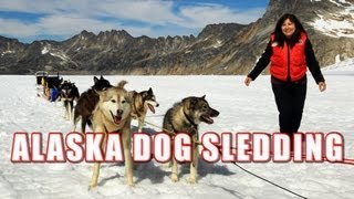 Alaska Dog Sledding On Top Of A Glacier (Short Film)