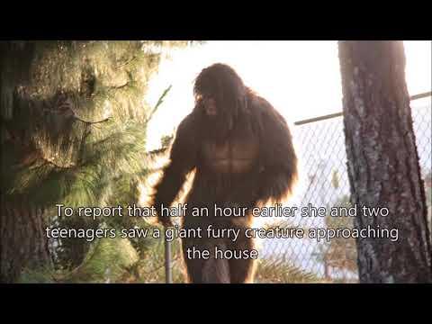 Bigfoot report Ohio Record Courier
