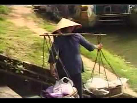 La Sau Rieng  Phi Nhung