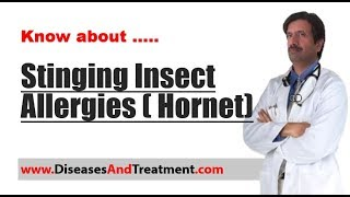 Stinging Insect Allergies ( Hornet (Bee Stings, Wasp Stings))
