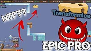 Transformice - EPIC Firsts [BURLAS #5]