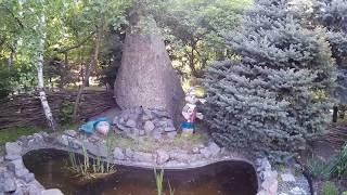 Декоративный буратино с черепахой украшают маленький бассейн