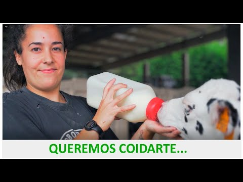 #noso: Por un selo de calidade dende o cooperativismo agrario galego
