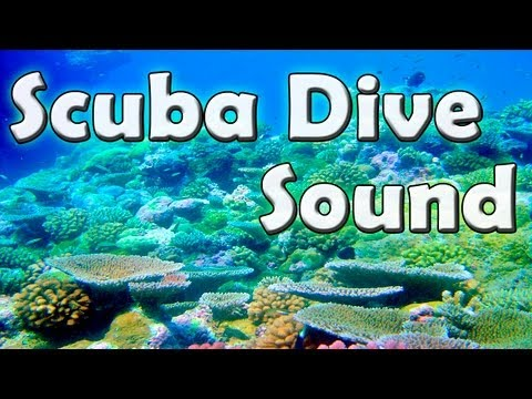 Scuba Dive Sound for Relaxation - Sound of water and coral reef images for meditation or relaxation