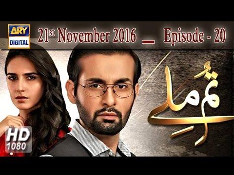 Tum Milay Ep 20 - 21st November 2016 - ARY Digital Drama