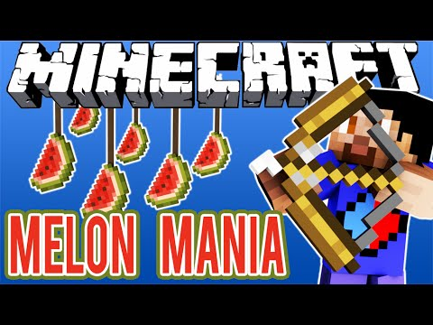 Minecraft MELON MANIA CHALLENGE Mini Game with Vikkstar