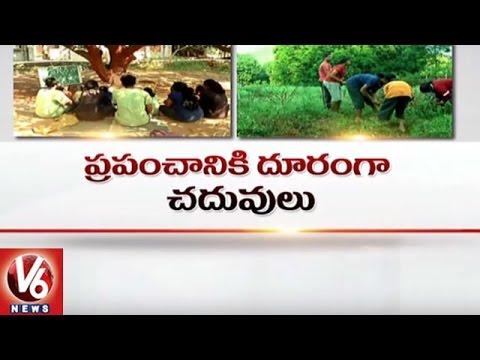 Special Story On Vikasa Vidya Vanam School In Vijayawada   Nature School    V6 News