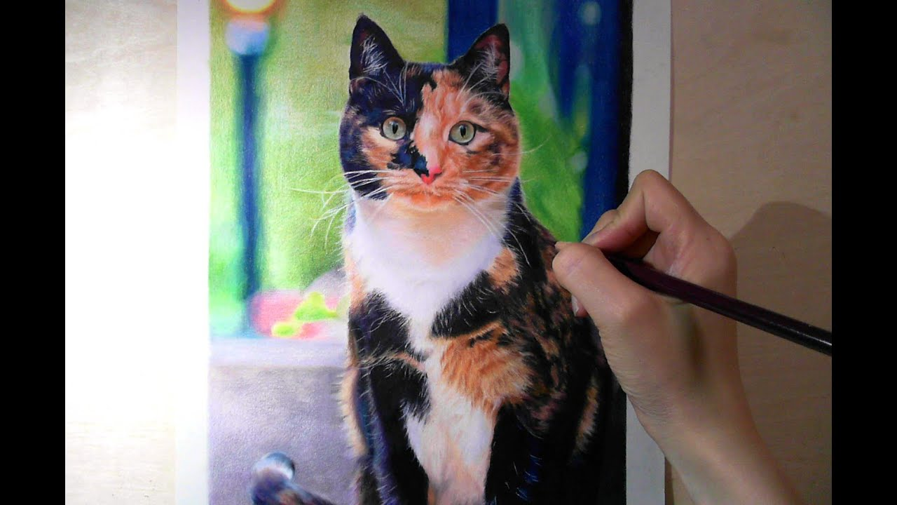 lulu u0027sartchannel colored pencil drawing cat 手絵 youtube