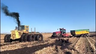 MUD 2019 | Cat TRIPLE WHEELS in FRANCE with QUADTRAC STUCK 🤦🏻‍♂️