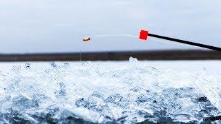 ТАКУЮ ПЛОТВУ В ЖИЗНИ НЕ ВИДЕЛА.зимняя рыбалка в палатке 2020