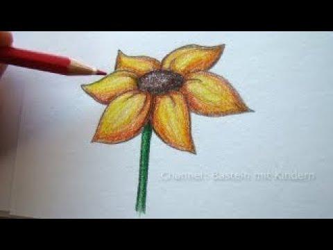Zeichnen lernen: Blume