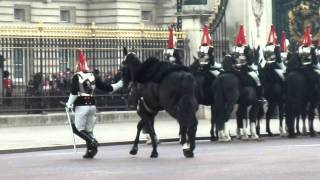 Guard gets Thrown Off His Horse Whilst The Queen Leaves Palace