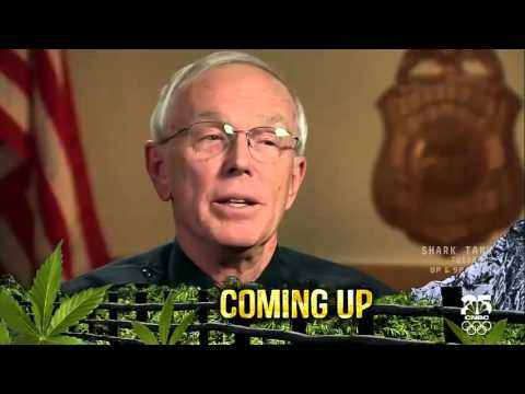 Marijuana in America׃ Colorado Pot Rush   CNBC documentary HD